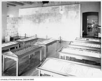 Royal Ontario Museum - Museum Wall of Egyptian temple