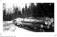 McRae Lumber Company. Loaded sleighs at pick-up point