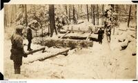 McRae Lumber Company - Cross Haul Method of Loading Skidways