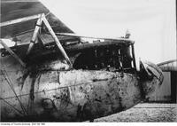 Albatross fuselage