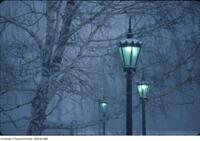Winter on campus, lampposts lit at dusk