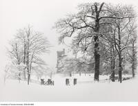 Winter scene - gates from Queen's Park into University grounds, showing University College Tower